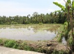 Building plot near Ubud centre with sawa view